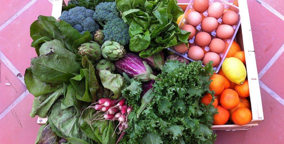 caja de verduras y huevos