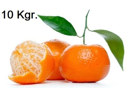 mandarina - 10 kgr.