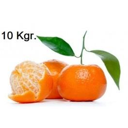 Caja de 10 kgr Mandarina