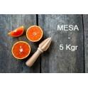 Caja de 10 kgr. de Naranja de Valencia